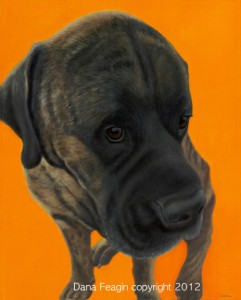 Mastiff Bull Mastiff-Inspired Pet Portraits and Animal Paintings by Dana Feagin